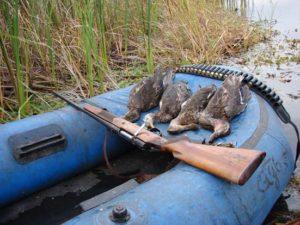 Особенности охоты на утку